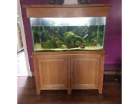 370 litre fish tank for sale. only 2 years old. paid £750 for it, so looking for £350 ono