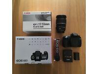 Canon EOS 60D with a Canon EF-S 17-55mm f/2.8 IS USM Lens