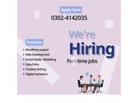 hi,friends jobs Availible data entry/ad clicking/ad posting and much more