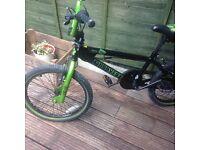The Muddyfox Mutant BMX bike