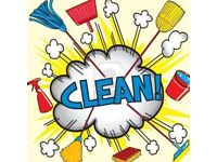 Private cleaner only £10 per hour!