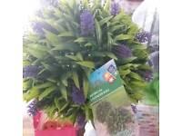 Artificial lavender balls x 2