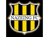 Looking for players and coaches for Nazeing Youth FC