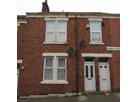 2 Bed Lower Flat, Canning Street, Benwell, NE4 8UH