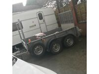 Ifor Williams trailer twin axle