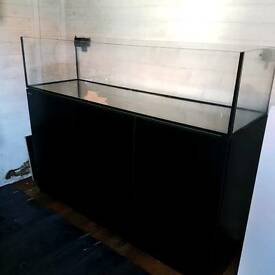 5ft shallow marine aquarium. Red rea reefer 450 stand