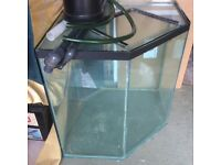 Large Marine Fish Acquarium. A five sided tank of strong glass .
