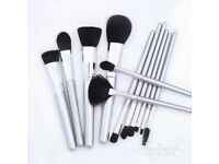 Face and Eye Makeup Brush Collection, 12 pce Icy Silver Makeup Brush Set
