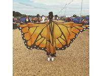 Butterfly wings with poles
