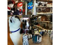 VOLUNTEERS NEEDED - New Cats Protection Charity Shop