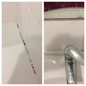 Silicone mould removal Burwood Heights Burwood Area Preview