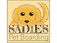 Sadie's Pet boarding