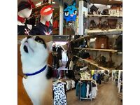 VOLUNTEERS NEEDED - Cats Protection Charity Shop, Gloucester Road