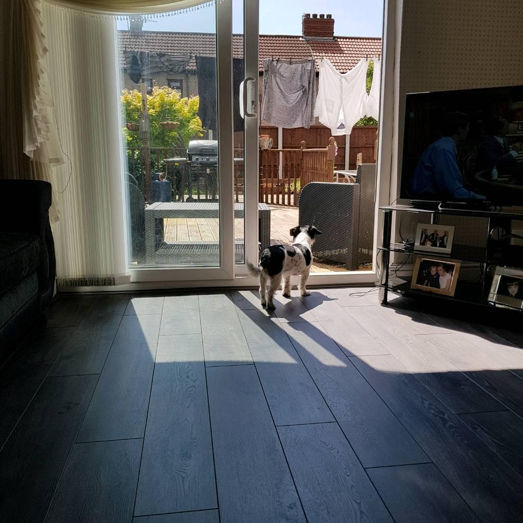Carpets And Grass Laminate Flooring