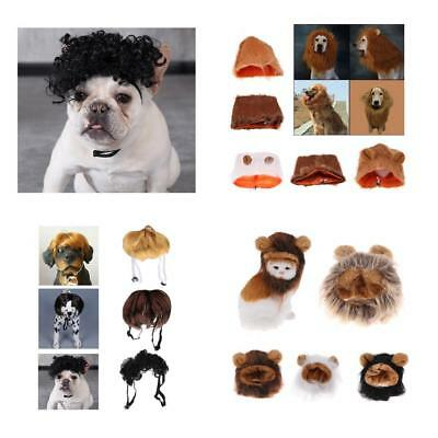 Pet Costume Lion Mane Wig for Cat Dog Halloween Clothes Fancy Dress up with Ears (Lion Mane Dog Costume)