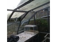 3 sided greenhouse for sale