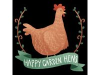 Introduction to Keeping Chickens Course