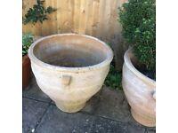 Over size plant pot