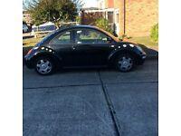 Daisy flowered black beetle,much loved fun car