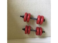 2 x 8kg Dumbells with 2kg weights