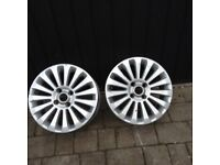 Rims for titanium fiesta