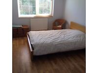 Lovely double room available in Barnes, London. £480 per month (includes bills)