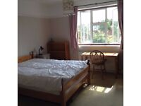 Spacious room to let in family house, own shower room, quiet private road