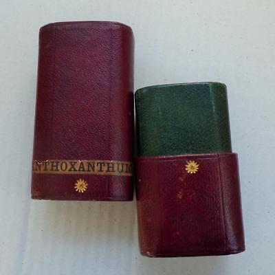 ANTIQUE Leather cased 'Anthoxanthum' label Homeopathy CASE early VICTORIAN