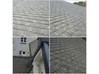 Roof cleaning; moss removal; roof repairs; all jobs on heights