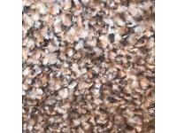 2.80x4.00 stainfree heathers carpet (new)
