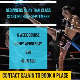 Muay Thai Beginners Course