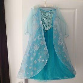 Elsa Dress and shoes.