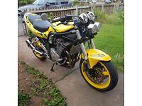 1200 Suzuki Bandit Streetfighter