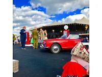 Goodwood Revival Grandstand Rover Badges