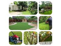 First service 20% off Tree cutting,grass cutting ,hedge trimming ,we cover areas all over Manchester