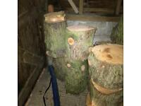 Logs for sale £5 each Open to offers