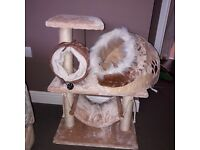 Kitten /cat play tower, tunnel and snug bed