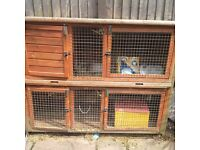 Two storey rabbit hutch with private breeding/nesting area