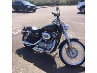 Harley Davidson XL883 Custom