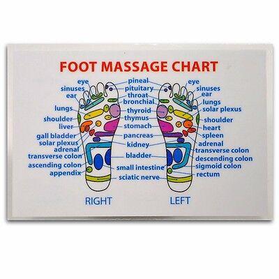 REFLEXOLOGY FOOT MASSAGE WALLET SIZE REFERENCE CARD Chart Pocket Acupressure ()