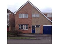 Comfortable 4-bed detached house to let in Fleckney, Leicestershire vacant mid March