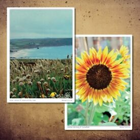 Mix pack of 4 double sided A6 greeting cards