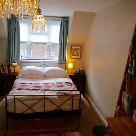Cosy 1 bed flat for rent in Battersea, bright and airy