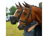 Happy hacker/fun horse