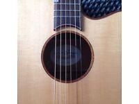 Acoustic guitar electric James neligan