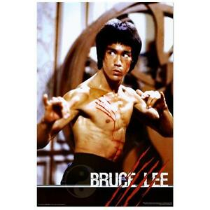 Bruce Lee Poster...Brand new
