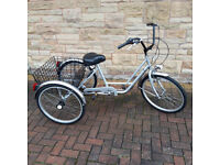Adult Pashley Picador Tricycle