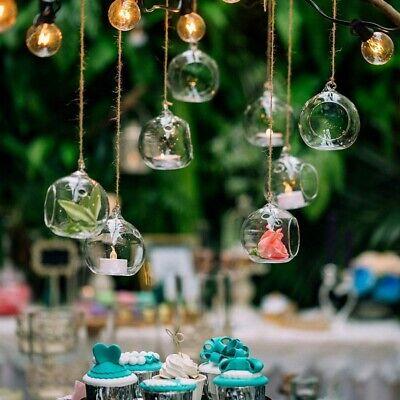 12Pcs Hanging Glass Globe Plant Terrariums Plants Tea Light Candle Holder
