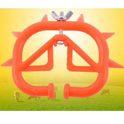 Milking Equipment in Livestock Supplies Cattle Nose Rings Calf Weaning Cow Weaner Best Design Livestock Cattle Bull Nose Calf Weaner Milk Sucking Preventer Ring Thorn Cow Ring Nose