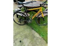 Carrerra TDF Road bicycle